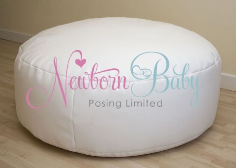 Newborn Posing Beanbag, Backdrop, Wrap, Wedge & Romper with 3 hours TRAINING